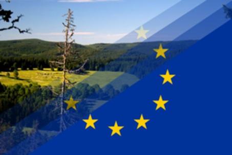 Kommission genehmigt 8-Milliarden-Beihilfe für österreichische Unternehmen